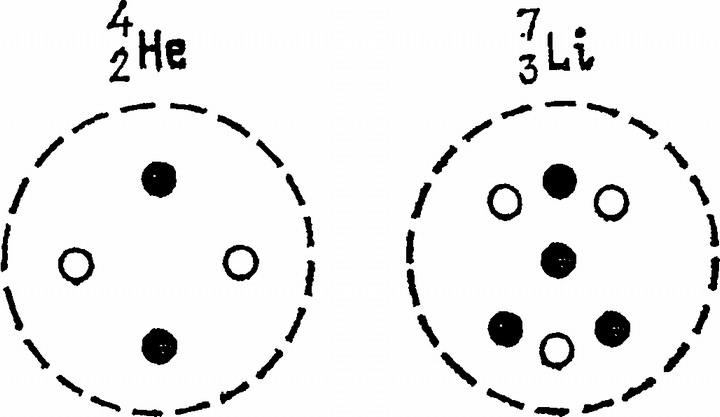 Условная схема строения ядер